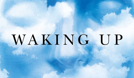 Waking-up-cover