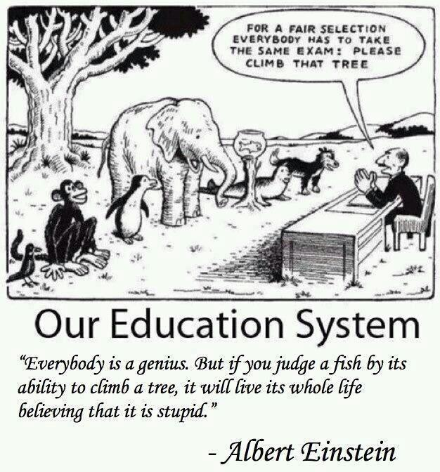 current-education-system